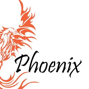 Westfir Acoustic Band | Phoenix Duo