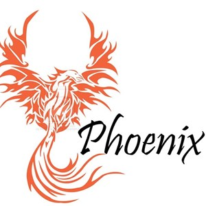 Salem, OR Folk Band | Phoenix Duo