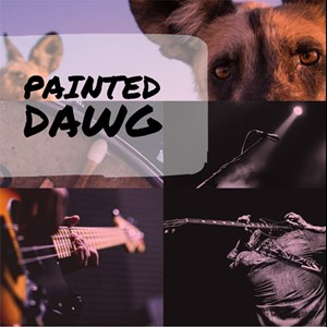 Charlotte, NC Rock Band | Painted Dawg