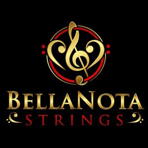 Lineville Chamber Music Duo | BellaNota Strings