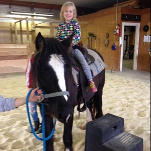 Telford, PA Pony Rides | Branchwood Stables