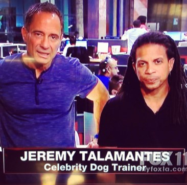 Celebrity Dog Trainer On TMZ