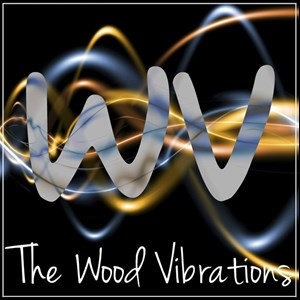 Glen Cove, NY Cover Band | The Wood Vibrations - Acoustic Party Band