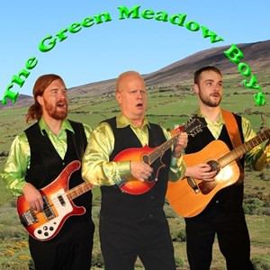 Chicago, IL Irish Band | Green Meadow Boys