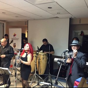 Best Latin Bands in New Jersey