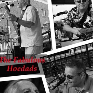Decatur, IL Cover Band | The Fabulous Hoedads