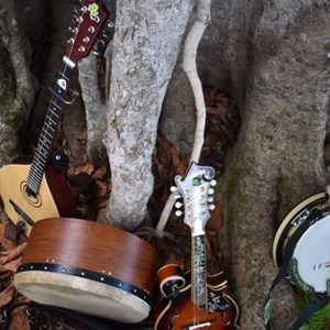 Bonita Springs, FL Irish Band | The Band Trinity