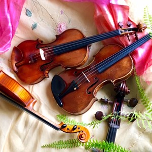 Best Chamber Music Quartets in North Benton, OH