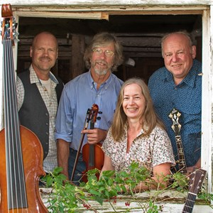 Minneapolis, MN Bluegrass Band | Timbre Junction