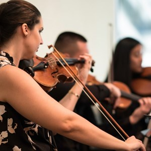 Chesapeake, VA String Quartet | Col Vita Music