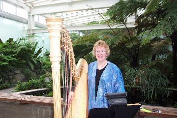 O'Meara Music - Solo, Duo, Or Trio | Eau Claire, WI | Harp | Photo #6