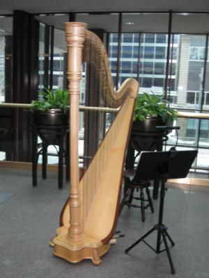 O'Meara Music - Solo, Duo, Or Trio | Eau Claire, WI | Harp | Photo #21