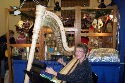 O'Meara Music - Solo, Duo, Or Trio | Eau Claire, WI | Harp | Photo #20