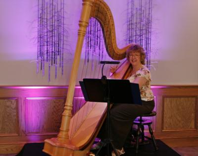 O'Meara Music - Solo, Duo, Or Trio | Eau Claire, WI | Harp | Photo #5