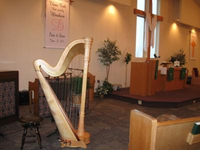 O'Meara Music - Solo, Duo, Or Trio | Eau Claire, WI | Harp | Photo #4