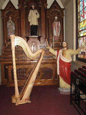 O'Meara Music - Solo, Duo, Or Trio | Eau Claire, WI | Harp | Photo #13