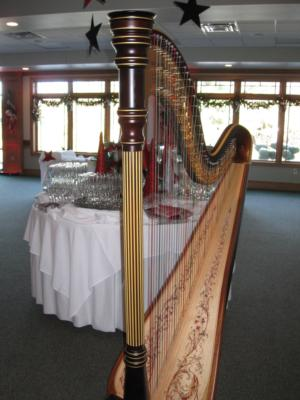 O'Meara Music - Solo, Duo, Or Trio | Eau Claire, WI | Harp | Photo #22