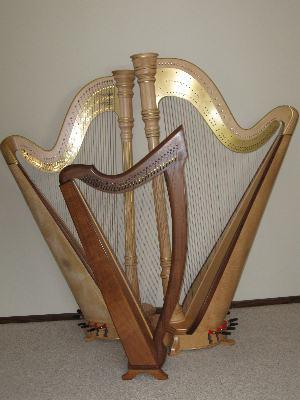 O'Meara Music - Solo, Duo, Or Trio | Eau Claire, WI | Harp | Photo #9