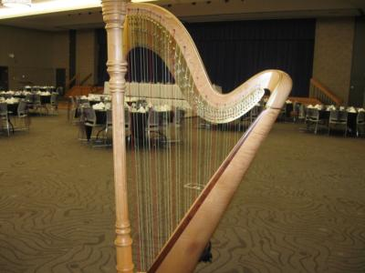 O'Meara Music - Solo, Duo, Or Trio | Eau Claire, WI | Harp | Photo #19
