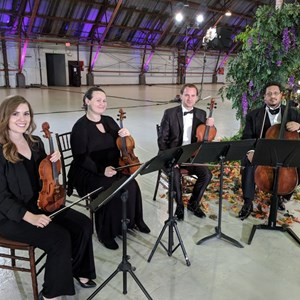 West Hollywood Chamber Music Duo | Atlantic String Ensemble