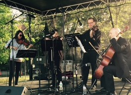 Parkwest Strings - String Quartet - Chicago, IL