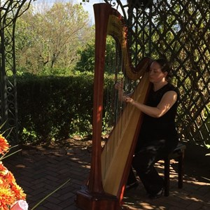 Hankins Chamber Music Trio | City Winds Trio and Harp & Flute Duo