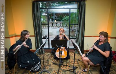 Del Lago Trio | Mission Viejo, CA | Classical String Quartet | Photo #16