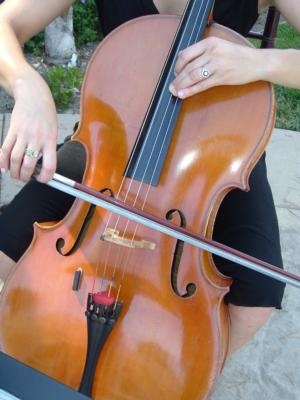Del Lago Trio | Mission Viejo, CA | Classical String Quartet | Photo #5