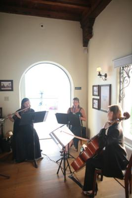 Del Lago Trio | Mission Viejo, CA | Classical String Quartet | Photo #11