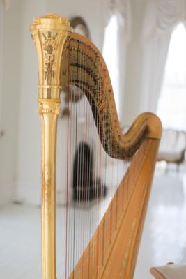 Ashley Toman | Baton Rouge, LA | Classical Harp | Photo #14