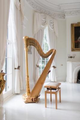 Ashley Toman | Baton Rouge, LA | Classical Harp | Photo #9