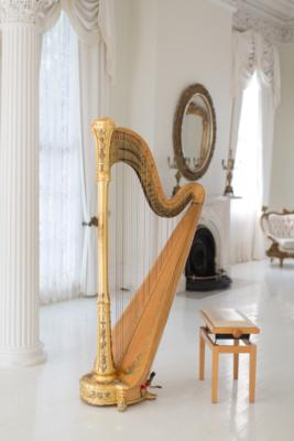 Ashley Toman | Baton Rouge, LA | Classical Harp | Photo #16