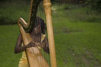 Brooklyn Harp | Brooklyn, NY | Classical Harp | Photo #4