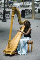 Brooklyn Harp | Brooklyn, NY | Classical Harp | Photo #5