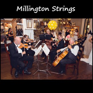 Burnt Ranch Acoustic Trio | Millington Strings
