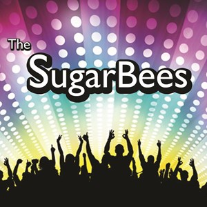 Awendaw 70s Band | The SugarBees