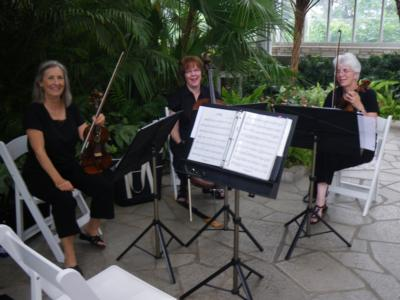 Heritage String Quartet | Ballwin, MO | Classical String Quartet | Photo #5