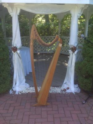 De Luna | Hooksett, NH | Harp | Photo #8