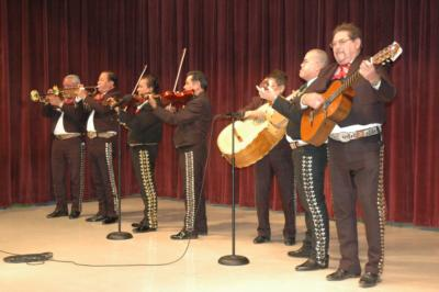 Mariachi Mexico 85 | Houston, TX | Mariachi Band | Photo #8