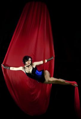 Aerial Showgirls | Van Nuys, CA | Circus Act | Photo #19