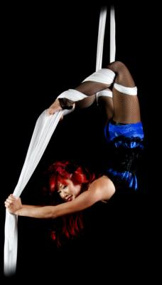 Aerial Showgirls | Van Nuys, CA | Circus Act | Photo #5