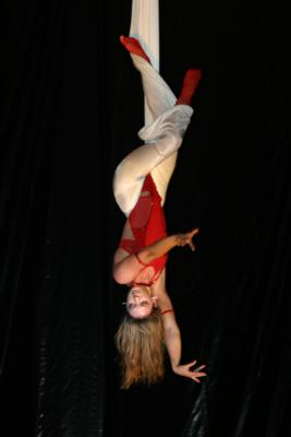 Aerial Showgirls | Van Nuys, CA | Circus Act | Photo #18