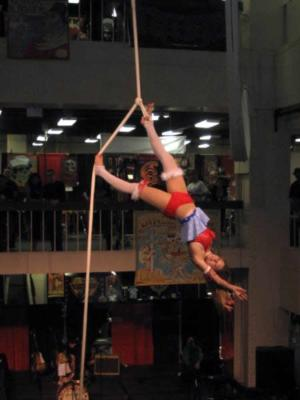 Aerial Showgirls | Van Nuys, CA | Circus Act | Photo #20