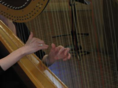 Emily John | New York, NY | Classical Harp | Photo #7