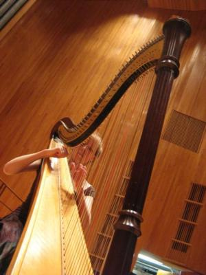 Emily John | New York, NY | Classical Harp | Photo #5
