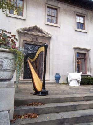 Devon Haupt, The Classic Harpist | South Bend, IN | Harp | Photo #16