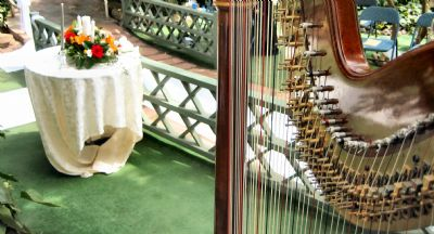 Devon Haupt, The Classic Harpist | South Bend, IN | Harp | Photo #11