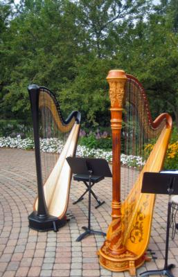 Devon Haupt, The Classic Harpist | South Bend, IN | Harp | Photo #14