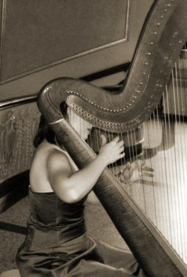 Devon Haupt, The Classic Harpist | South Bend, IN | Harp | Photo #15