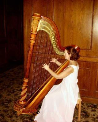 Devon Haupt, The Classic Harpist | South Bend, IN | Harp | Photo #17